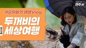 귀요미 두꺼비들의 여행 브이로그 (feat. 부산 온천천) [맨주사]