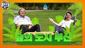 [황타18회]부산은 역세권? 스세권? NoNo 숲세권!! 숲의도시, 부산!!